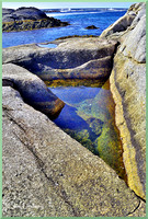 The Shapely Tidal Pool w border DSC_0567