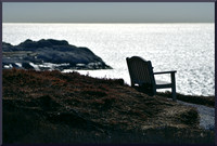 Wee Bench by Shad Bay DSC_8694