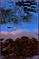 Woodpile and Snowfall w sig for web DSC_4431